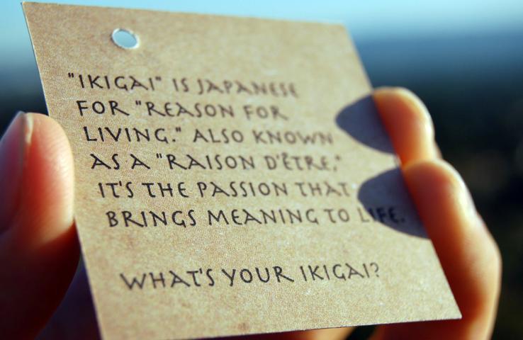 Ikigai, motivul pentru care se trezesc japonezii