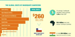 Cât ne costă criza salubrității?