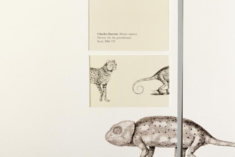 Cum ar fi arătat azi cărțile de vizită ale lui Shakespeare, Darwin și ale altor personalități