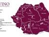 Descoperă vinurile din România