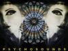 Concert Psychosounds Metal Ladies Night la Fabrica