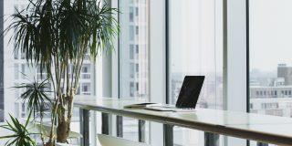 4 solutii pentru a imbunatati atmosfera de la birou