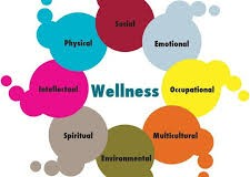 Fundamentele unui program de wellness