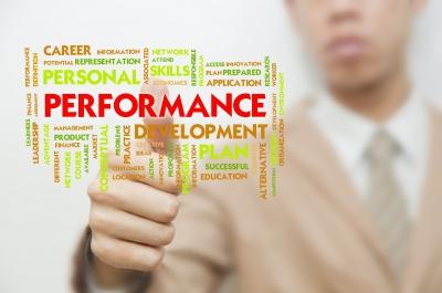 Piaţa de dezvoltare pentru manageri în 2013