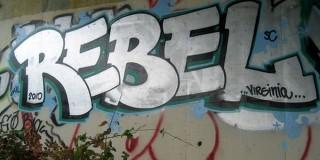 De ce tinerii rebeli devin antreprenori de succes