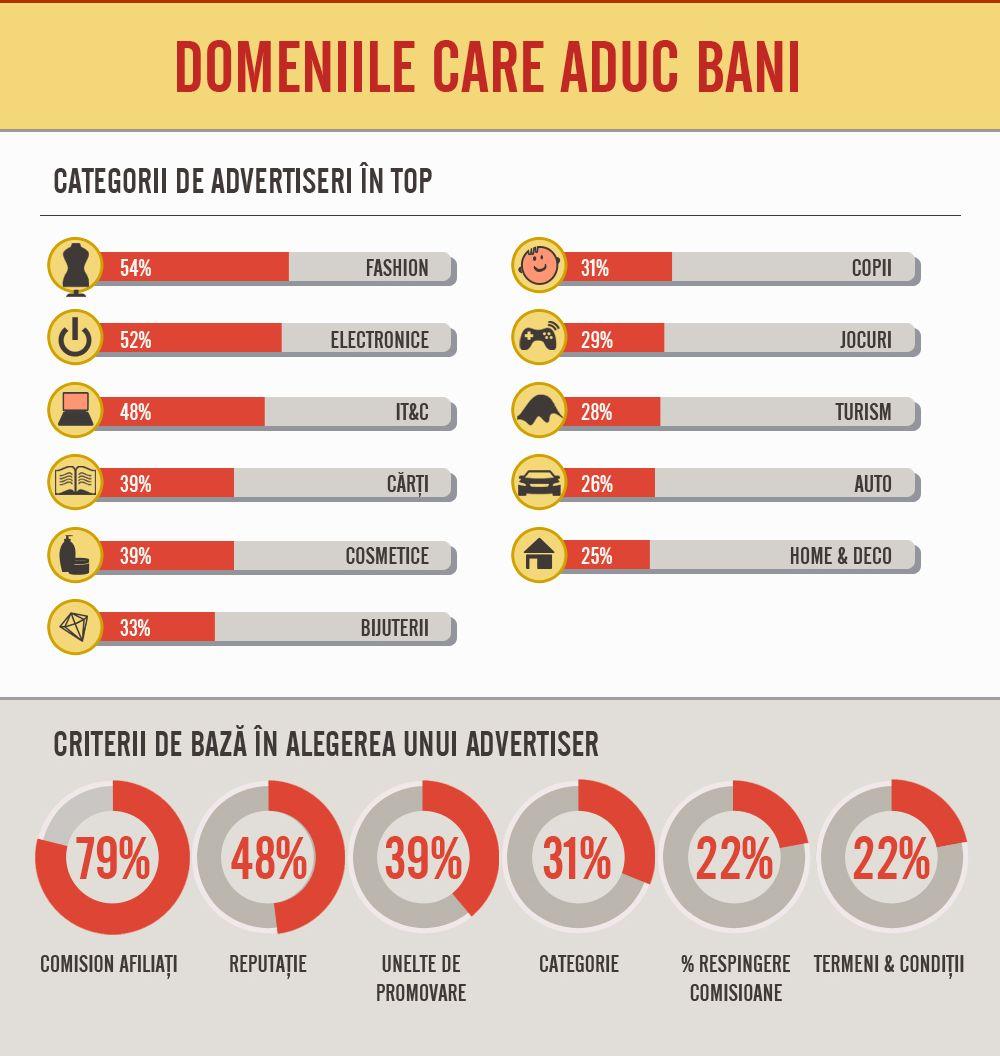 Cine sunt românii care câștigă bani online în 2013 - Studiu