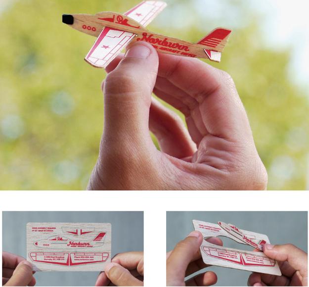 carti vizita - avion