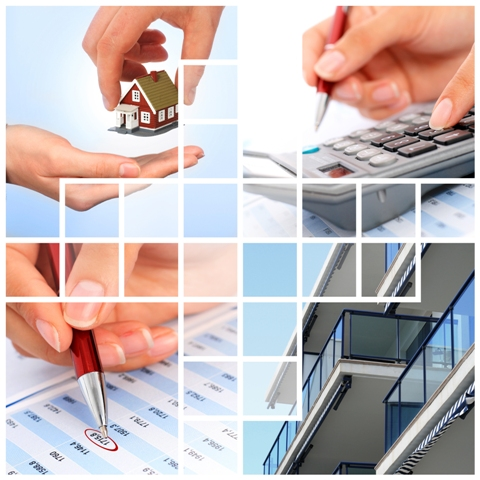 Piaţa de real estate, trenduri și evoluţie