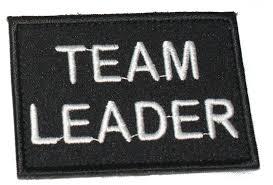 Ce preferă echipa: liderul sau managerul?