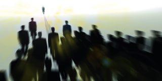 Rolul auditului intern în organizaţii