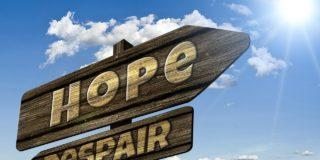 Optimism versus realism în planurile de business