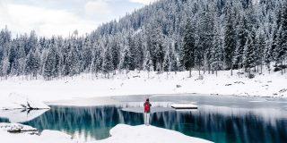 Încărcat laRomânii, adepţii sărbătorilor în familie în această iarnă