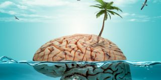 Trucuri pentru odihna, revigorarea si relaxarea creierului in vacanta