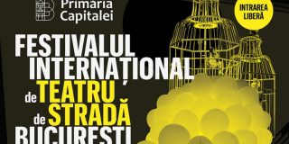 Festivalului International de Teatru de Strada Bucuresti