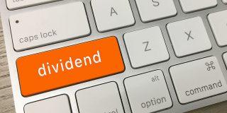 Pana acum cateva zile, dividendele nu puteau fi distribuite decat pe baza de situatii financiare anuale