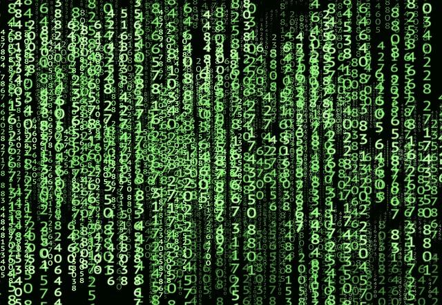 Ce spun directorii generali despre digitalizare