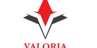 Compania de training si consultanta Valoria vizeaza triplarea cifrei de afaceri, in 2019