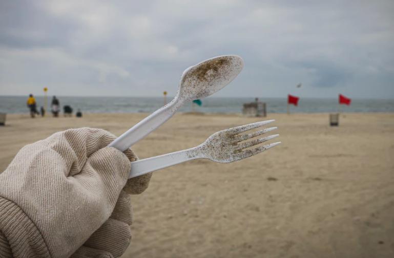 Ce firme vor fi afectate de interzicerea articolelor din plastic?