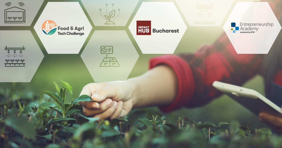 Impact Hub cauta antreprenorii care vor revolutionaagricultura si industria alimentara prin tehnologie!
