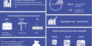 Studiu Instant Factoring: Companiile cu cifra de afaceri sub 50.000 euro au fost cele mai profitabile microintreprinderi in 2018